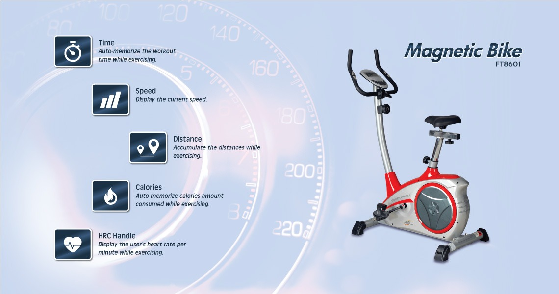 Gintell Magnetic Bike FT8601 Fitness Equipment